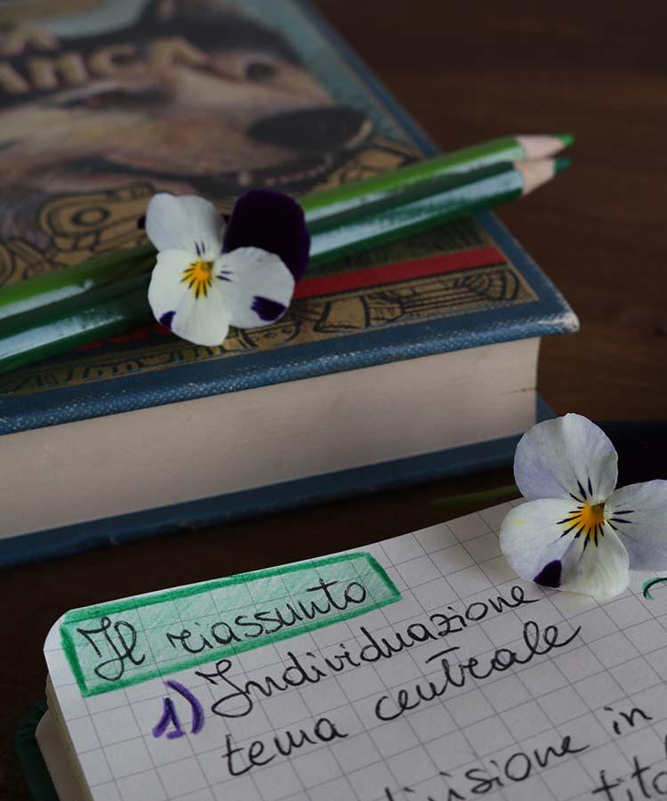 Schema per imparare a scrivere il riassunto di un testo, approfondimento di italiano per gli studenti della scuola secondaria di I grado | Homework & Muffin