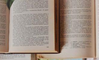 Test: Quanto sei preparato 2, un quiz di Italiano, Storia e Geografia per gli alunni del II anno della Scuola Sec. di I Grado | Homework & Muffin