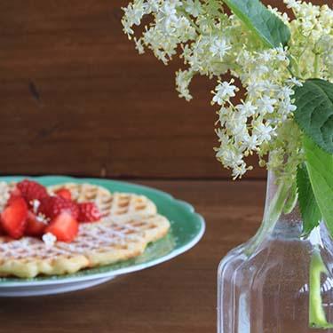 Waffel con fiori di sambuco, ricetta dolce per la merenda degli studenti della Scuola secondaria di I grado a cura di Gabriella Rizzo | Homework & Muffin
