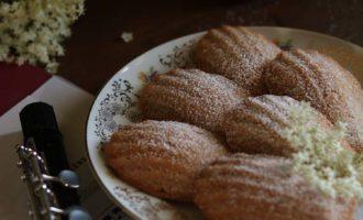 Madeleine alle fragole con limone e fiori di sambuco, ricetta per la merenda dolce per bambini e ragazzi a cura di Gabriella Rizzo | Homework & Muffin