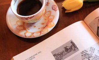 La rinascita dell'Europa dopo il Mille, approfondimento di storia per gli alunni del I anno della scuola secondaria di I grado | Homework & Muffin